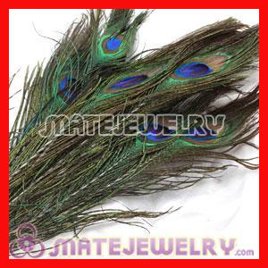 Green Natural Peacock Feather Hair Extension Wholesale
