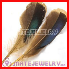 Natural Duck Grey-blue Loose Hair Feather Extensions