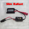 induction electric ballasts