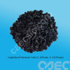 Graphitized Petroleum Coke