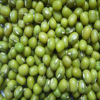 China green mung beans (2011 Crop)
