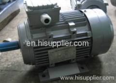 MS series electric motor