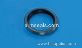 transmission oil seal for Benz