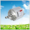 Wind Turbines Generator with 600W Power, High Efficiency and Long Lifespan