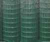 Holland Wire Mesh(PVC coated)