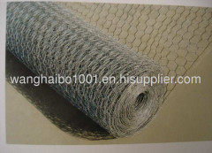 haxagonal wire mesh