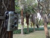HD Mini Game Infrared Night Vision Hunting Camera/Waterproof Scouting Trail Camera LTL-5210A