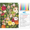 Self Adhesive High Glossy PP paper
