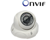 2 Megapixel Vandal proof Dome IP Camera (IGV-IP204) Support iPhone/iPad/Android