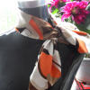 2012 New Ladies silk scarves