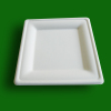 Rectangular paper plate,paper tray