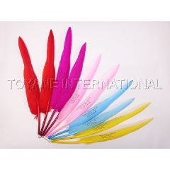 Promotional feather pen