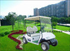 2 Seats Electric Vehicle Golf Cart