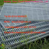 factory wholesale high quality welded wire mesh fence panel