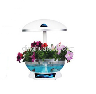 New office indoor potted flowers plant organic vegetables miniascape flower basket