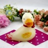 Animal Duck Craft Candle