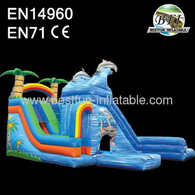 Wet&wild dual slide with 2 pools