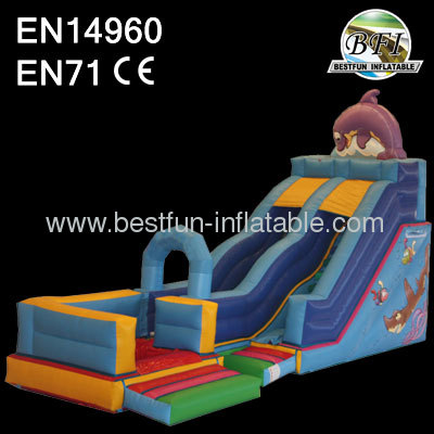 Water Slide With Pool WS0081F