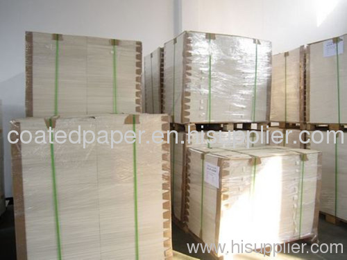 Double PE-Coated Paper For Making Paper Cup