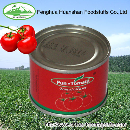 canned low price tomato paste