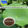 Lotus Leaf Extract(2% Nuciferine)
