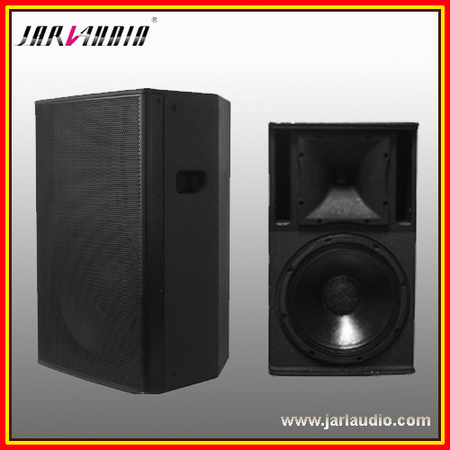 2 way 10-inch-full range frequency speaker