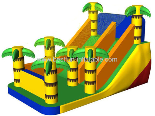 Backyard Dry Inflatable Palm Slide