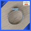 Worm Drive Clamp