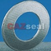 Sell Reinforced Graphite Gasket