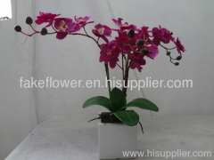 artificial potted orchid/artificial potted flower