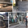 Galvanized / Ungalvanized steel wire rope