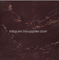 SOLUBLE SALT-ML2208 Polished Tile