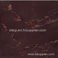 SOLUBLE SALT ML2208 Polished Tile