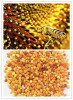 China Bee Pollen Extract