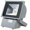 85V-265V Cheap Price 100W Ip65 LED Outdoor Flood Light