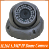 H.264 Real-time 1.3MP 1/3'' low illumination CMOS 42*F5 LEDs 20-25m IR View IP Security Dome Camera.