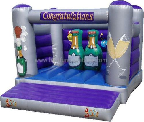 Inflatable Party Champagne Jumping House