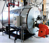 WNS gas/Oil fired boiler