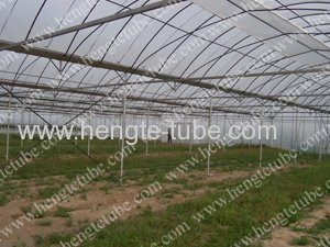 GP-827-S Multi-span metallic Greenhouse