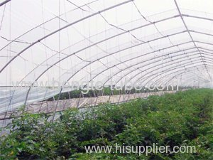 Economic tunnel green house