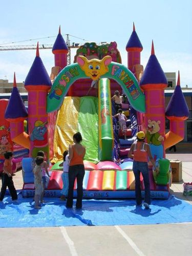 Fantasia Inflatable Bouncer And Slide Combo