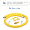 Gas Catering Hose Flexible Hose Corrugated Hose (ZJ12FM)