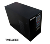 WELLSEE CE/ROHS 1000 watt pure sine wave ac inverter