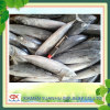 frozen bonito fish 300-500g