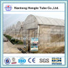 GLW6 PVC Multi san metal Greenhouse