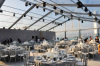 Big China transparent marquee tent for wedding, party and all events