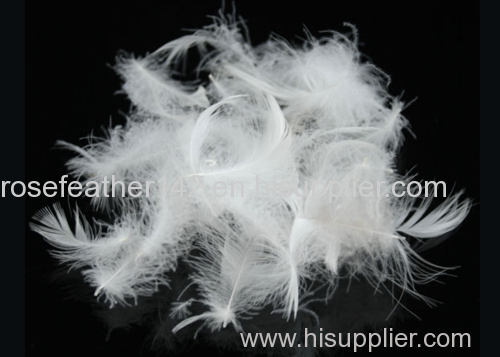 Washed white duck feather 4-6 cm