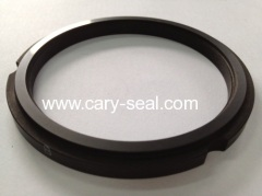 Carbon seal rings products