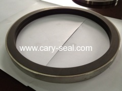 Tungsten Carbide seal Ring products