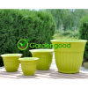 Biodegradable Rome Flower Pot fleur